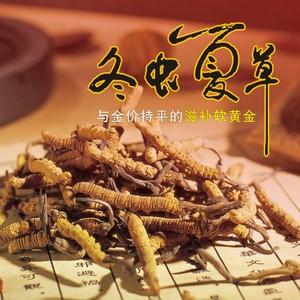 青海玉树果洛,冬虫夏草(190元/克三根)